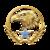 Мастер-сержант 15-го уровня